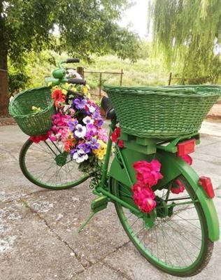 Bicicletta fiorita